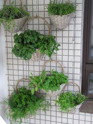 Vertikales Gärtnern im Balkongarten spart viel Platz.
