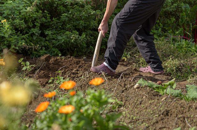 Entferne die Grasnarbe mit einem Spaten.
