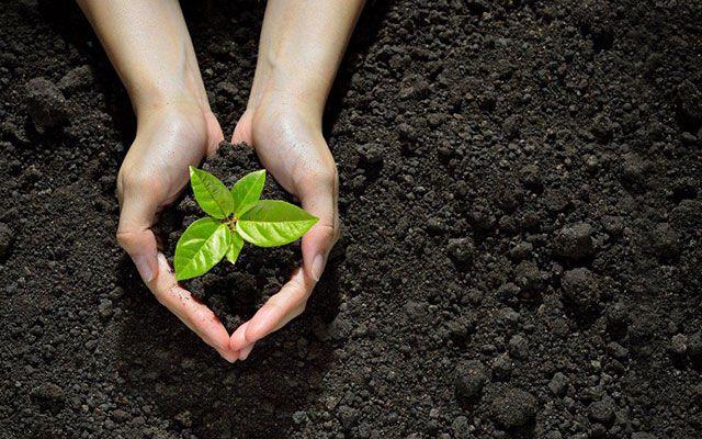BKK ProVita gesundheit klimaneutral nachhaltig leben