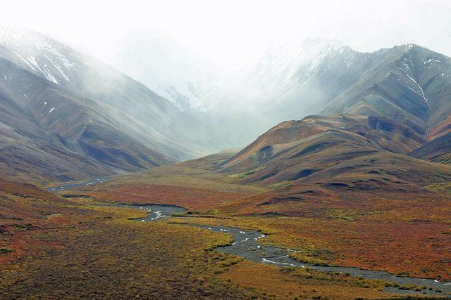 In der subpolaren Tundra ist die Vegetation sehr spärlich.