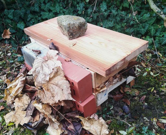 Aus einem Holzbrett, Backsteinen und Herbstlaub kannst du deinem Igelhaus ein Dach und eine Wärmeisolierung bauen.