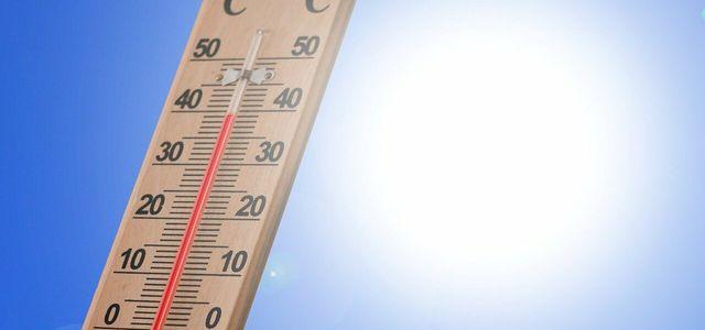 Klimawahlcheck
