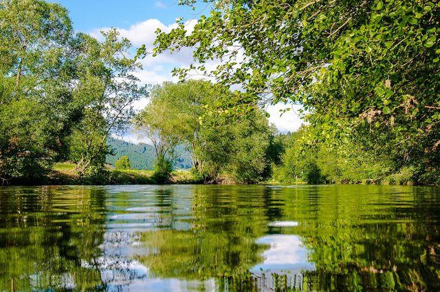 Tipps für eine Reise in den Schwarzwald