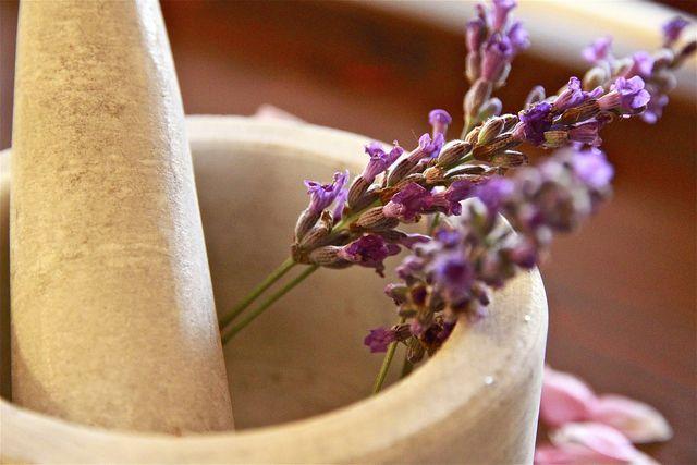 Lavendel ist eine vielseitige Heilpflanze.