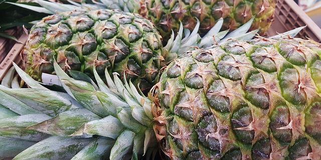 Die stachelige Blattkrone der Ananas und die harte Schale dienen zum Schutz.
