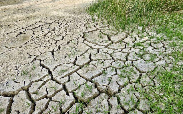 Der Klimawandel mit Dürre kann Millarden kosten.