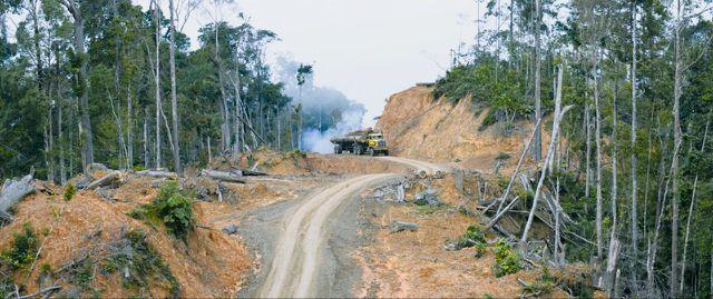 """Der Kinofilm """"Die Stimme des Regenwaldes"""" zeigt, wie vielschichtig das Problem der Abholzung der Regenwälder ist."""