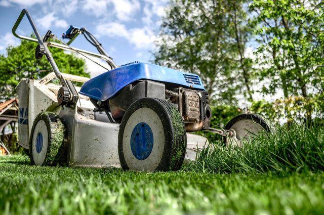 Vor dem Düngen: Rasen mähen