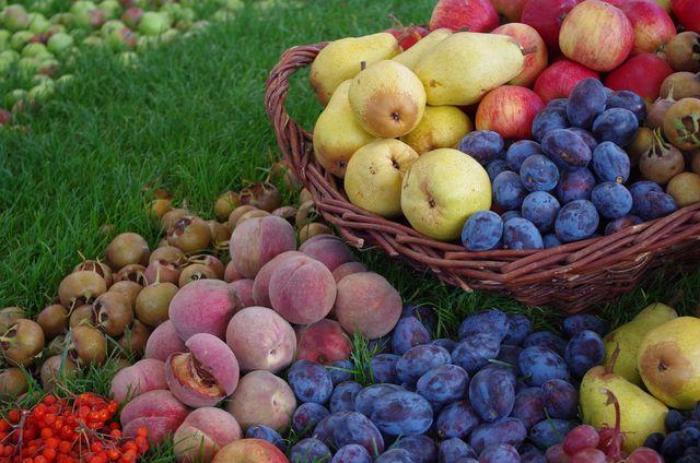 Viele Obstsorten sind nicht nur vitaminreiche, sondern auch purinarme Lebensmittel.