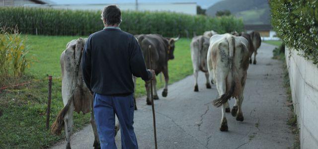 Filmtipp: Das System Milch