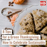 8 Tips for a Green Thanksgiving: How to Celebrate Sustainably