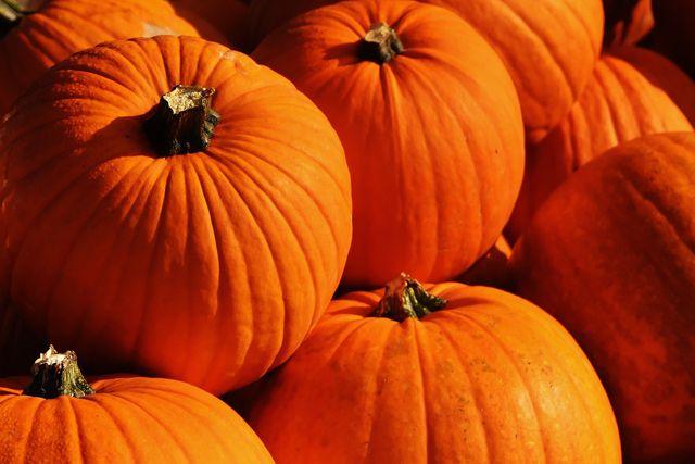 Gebackener Kürbis bildet ein leckeres Herbstrezept.