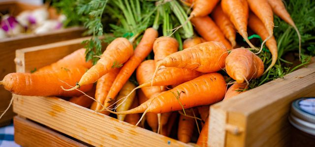 How to Store Carrots Like a Pro storing carrots at home