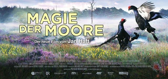 Magie der Moore (2015)
