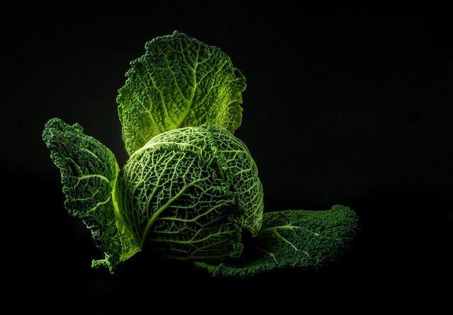 Klassische Kohlsorten wie den Wirsing mit der Diät wiederentdecken.