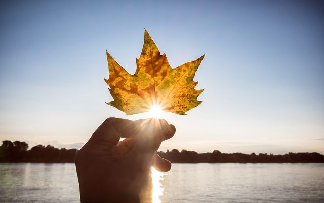Seasonal affective disorder take in fall best moments