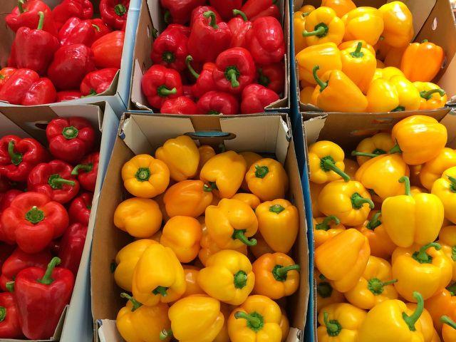 Lagere größere Mengen Paprika in luftdurchlässigen Kisten.