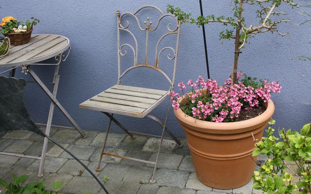 Ein alter Stuhl kann als Rankhilfe für Topfpflanzen dienen.