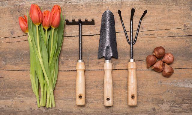 Für den Balkongarten benötigst du kleine Gartenwerkzeuge.