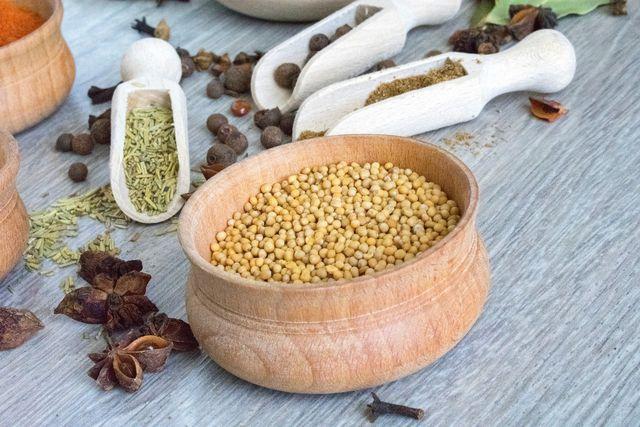 Aus deinen gesammelten Senfkörnern kannst du selbst Senf herstellen.