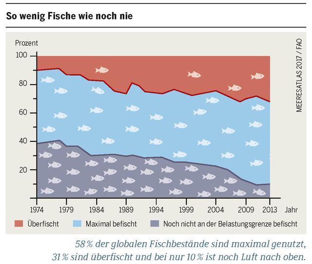 Meeresatlas 2017: Überfischung