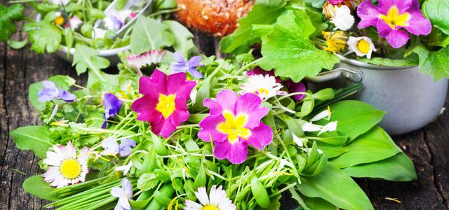 Essbare Blüten: das gewisse Etwas in deinem Salat-Rezept