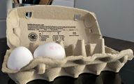 How to tell if eggs are still good tests carton best by date