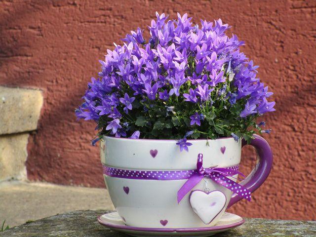 Nicht gleich entsorgen: Altes Porzellan kann eine tolle Deko für den Garten abgeben.