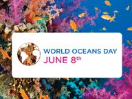 Welttag der Meere: am 8. Juni! #worldoceansday