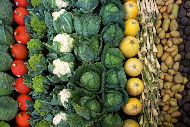 Abwechslung und Kalzium schützt die Nieren vor Oxalsäure.