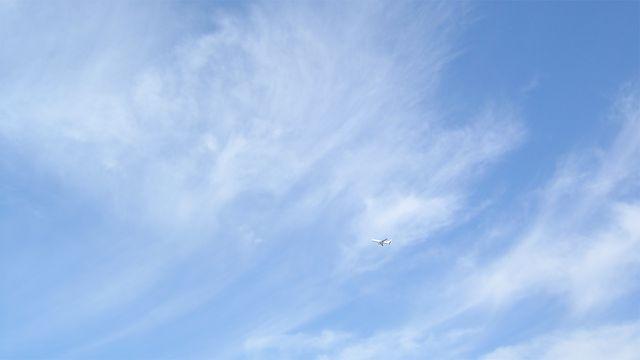 Cirrus-mit-Flugzeug