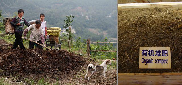 Bio-Landbau und Klimaschutz sind ein starkes Team