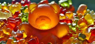 which gummy bears are vegan and which are not
