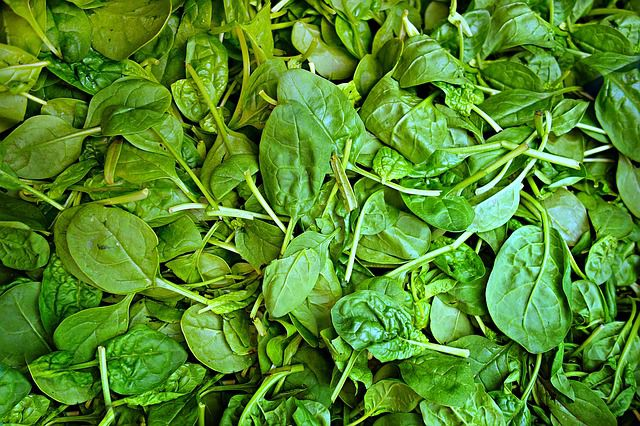 Guter Lieferant von Biotin/Vitamin 7: Spinat