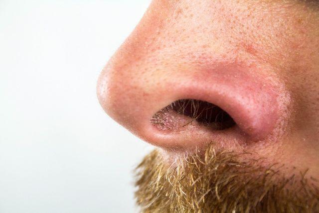 Am leichtesten lassen sich Nasenhaare mit einem Trimmer entfernen.
