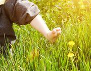 Wie man seinen ökologischen Fußabdruck reduzieren kann