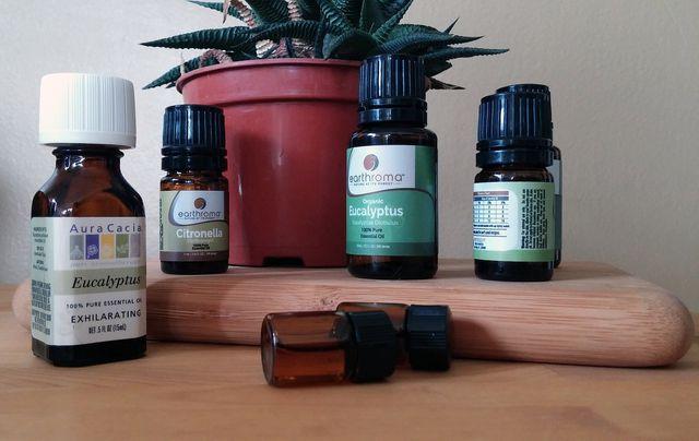 Eukalyptusöl besteht aus vielen wertvollen aromatischen Stoffen.