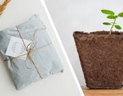 Eco-friendly gift ideas sustainable last minute presents