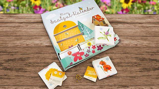 Adventskalender mit Samen hilft den Bienen im nächsten Sommer