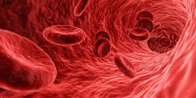 Ein zu hoher Blutdruck schädigt auf Dauer die Blutgefäße.