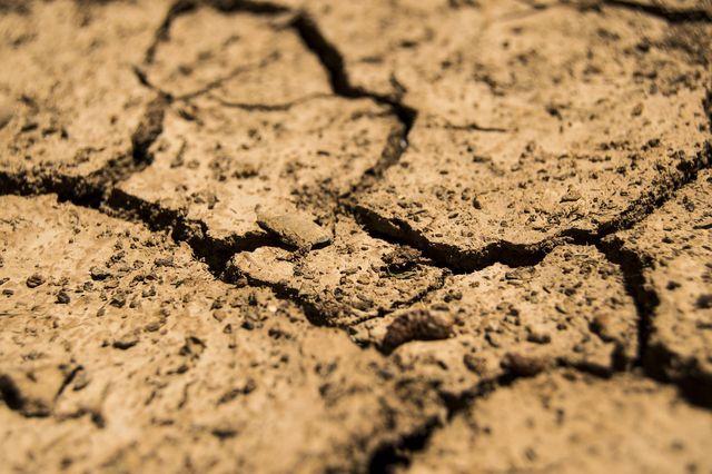 Saurer Boden kann Wasser nicht so gut speichern und trocknet in Dürreperioden schnell aus.