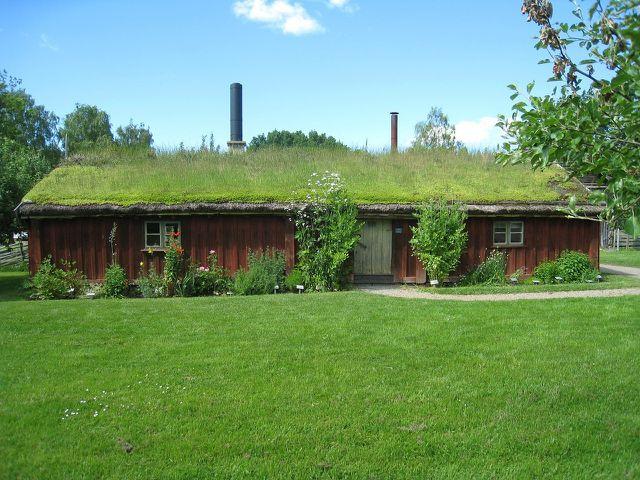 Auch ein kleines Haus kannst du begrünen.