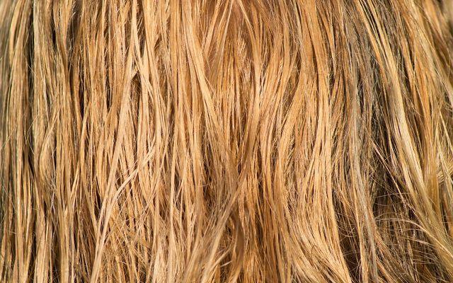 Haare schneidest du am besten, wenn sie feucht sind.