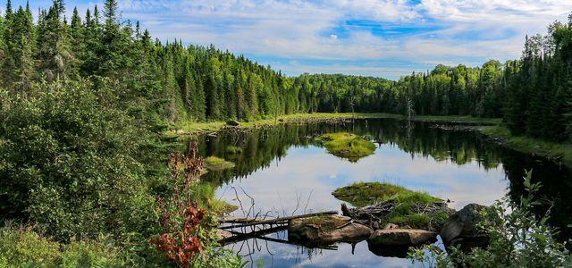 Abschalten & offline gehen in der Natur
