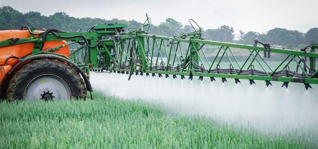 Pestizide schädigen nachhaltig die Umwelt, belegen Studien.