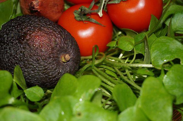 Aus Postelein kannst du leckeren Salat zubereiten.