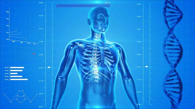 Die richtige Ernährung bei Rheuma kann Entzündungsmediatoren günstig beeinflussen.