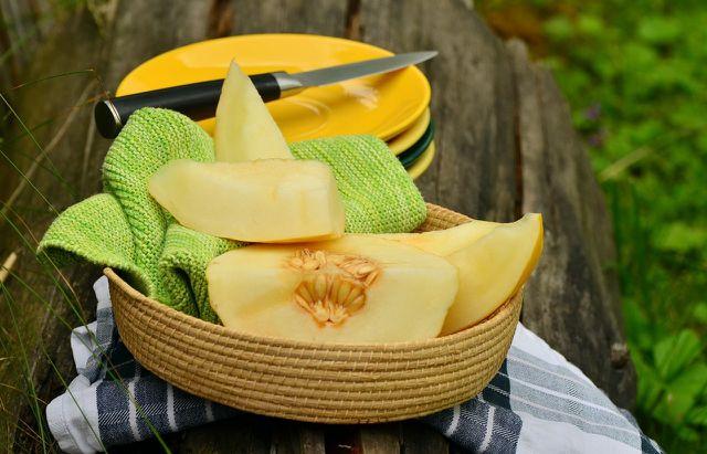 Damit du reife Früchte ernten kannst, musst du die Honigmelonen rechtzeitig anpflanzen.