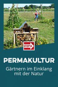 Permakultur: Gärtnern im Einklang mit der Natur
