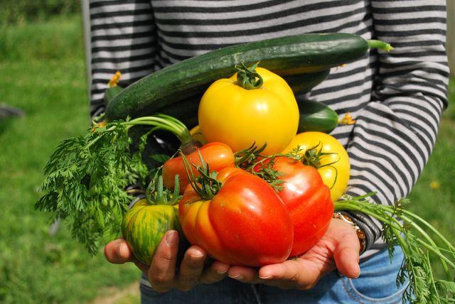 Im Garten ziehst du Pflanzen groß und erlebst dadurch Selbstwirksamkeit.